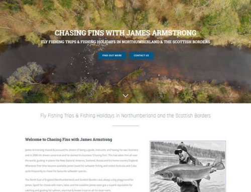 New Site: Chasing Fins